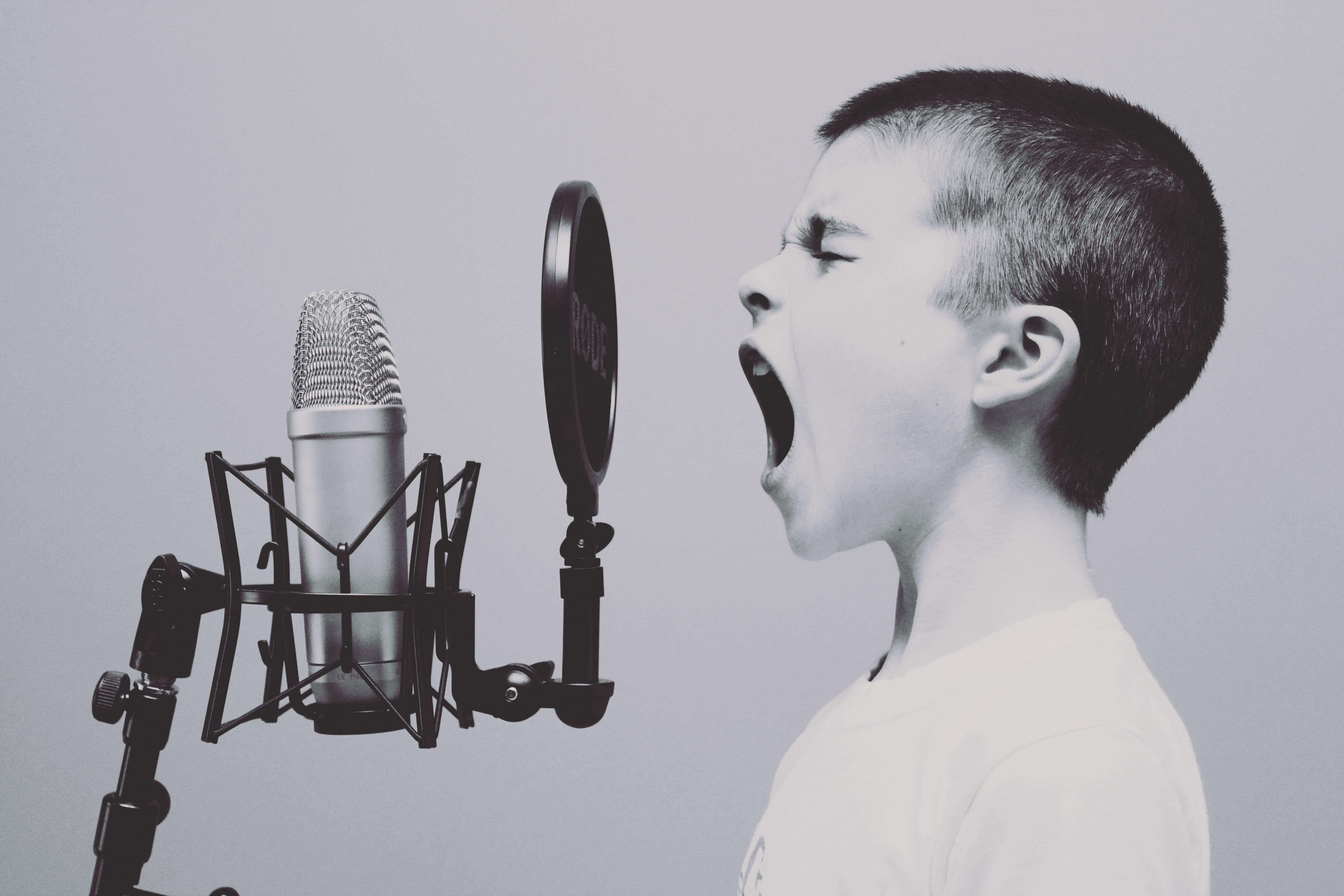 Gesangsunterricht in Berlin Mitte (45 Minuten individueller Einzelunterricht)
